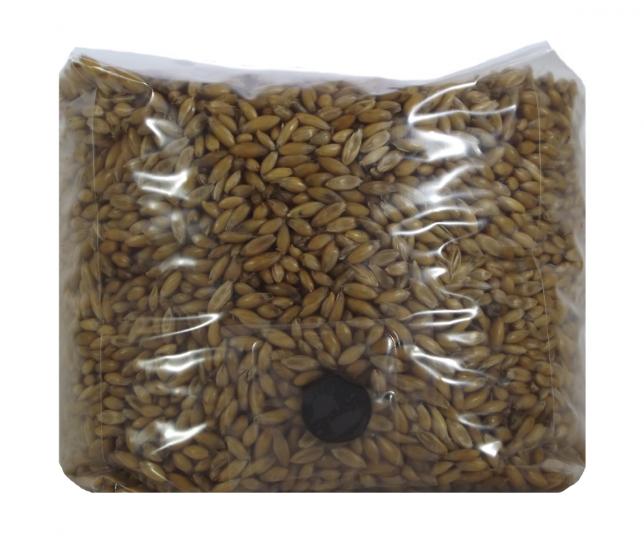 Whole Oats Mushroom Substrate Spawn Bag (3 Quarts)